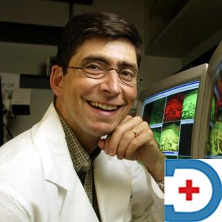 Dr Michael J. Polydefkis